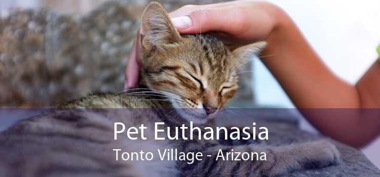 Pet Euthanasia Tonto Village - Arizona