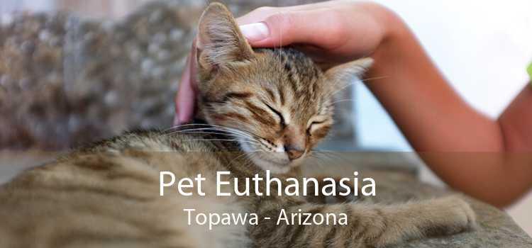 Pet Euthanasia Topawa - Arizona