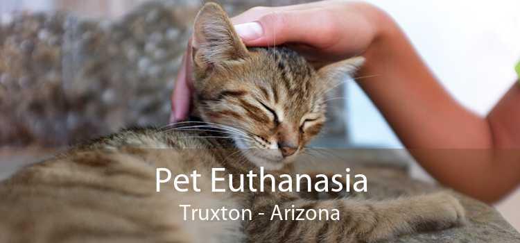 Pet Euthanasia Truxton - Arizona