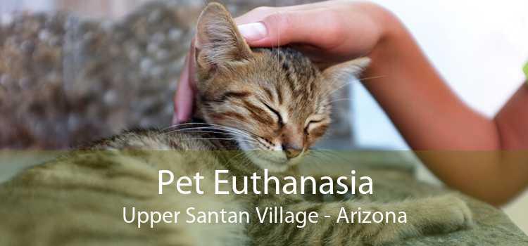 Pet Euthanasia Upper Santan Village - Arizona