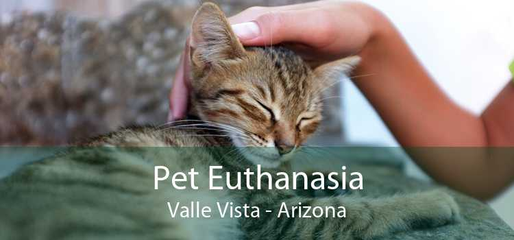 Pet Euthanasia Valle Vista - Arizona