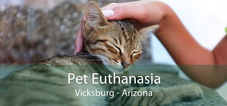 Pet Euthanasia Vicksburg - Arizona