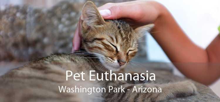 Pet Euthanasia Washington Park - Arizona