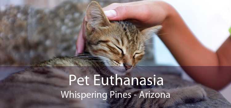 Pet Euthanasia Whispering Pines - Arizona