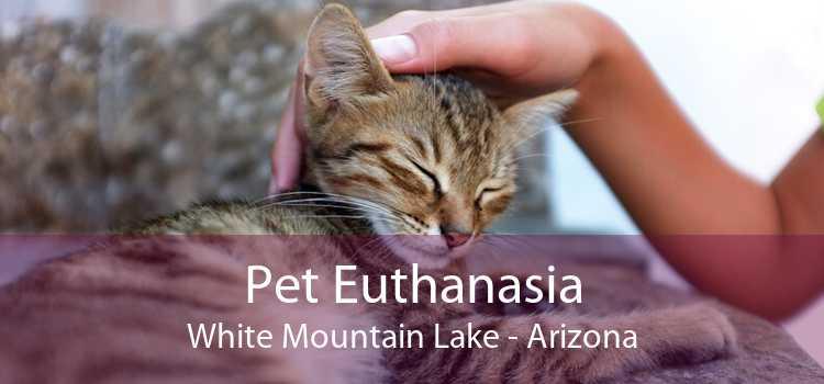 Pet Euthanasia White Mountain Lake - Arizona