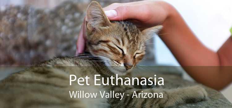 Pet Euthanasia Willow Valley - Arizona