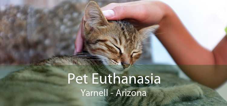 Pet Euthanasia Yarnell - Arizona