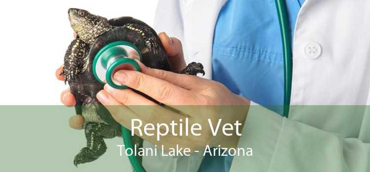 Reptile Vet Tolani Lake - Arizona