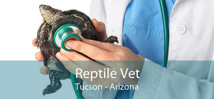 Reptile Vet Tucson - Arizona