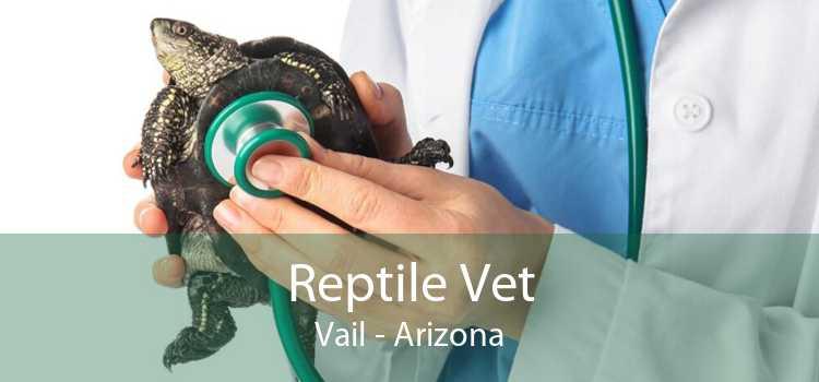Reptile Vet Vail - Arizona