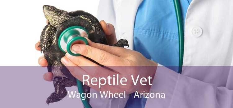 Reptile Vet Wagon Wheel - Arizona