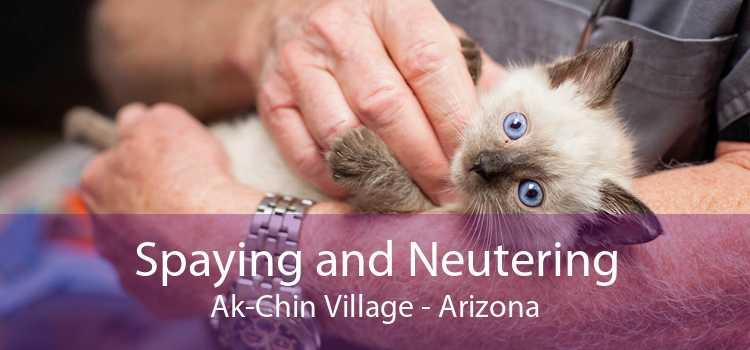 Spaying and Neutering Ak-Chin Village - Arizona