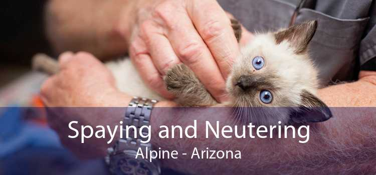 Spaying and Neutering Alpine - Arizona