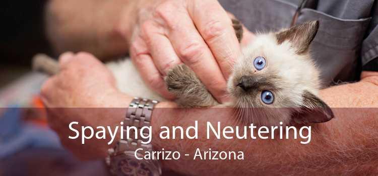 Spaying and Neutering Carrizo - Arizona