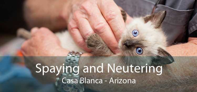 Spaying and Neutering Casa Blanca - Arizona