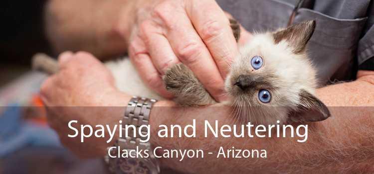 Spaying and Neutering Clacks Canyon - Arizona
