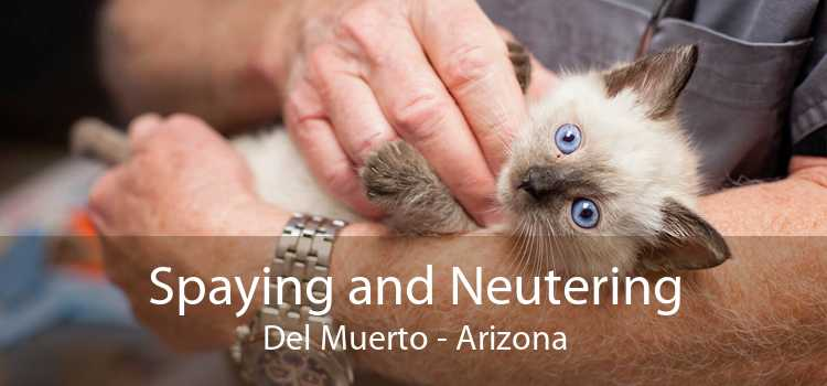Spaying and Neutering Del Muerto - Arizona