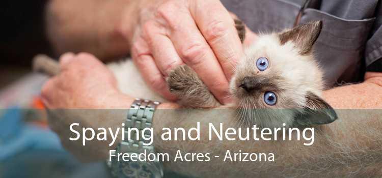 Spaying and Neutering Freedom Acres - Arizona