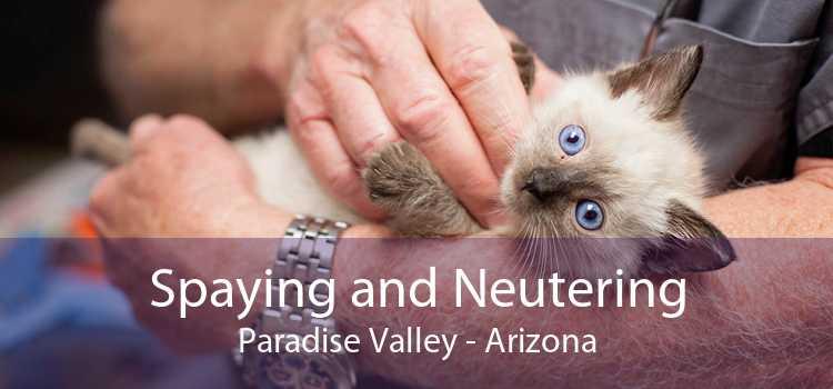 Spaying and Neutering Paradise Valley - Arizona