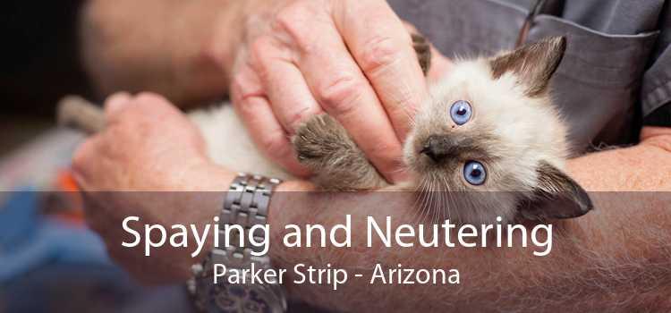 Spaying and Neutering Parker Strip - Arizona