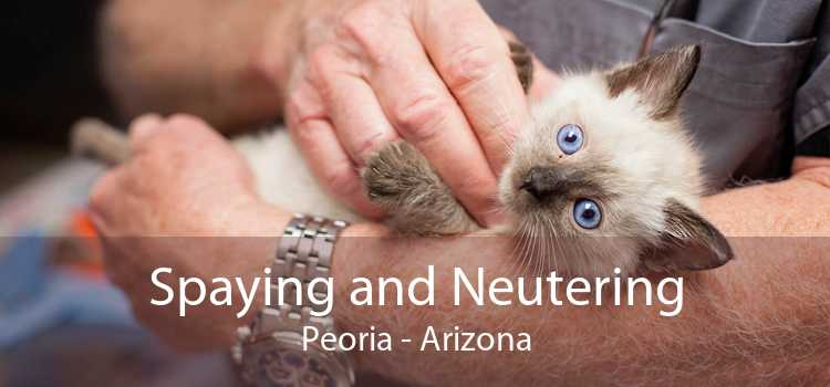 Spaying and Neutering Peoria - Arizona