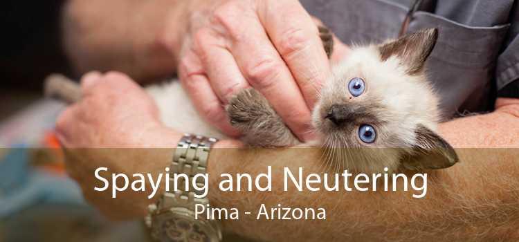Spaying and Neutering Pima - Arizona
