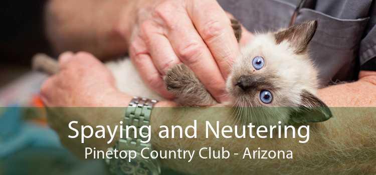 Spaying and Neutering Pinetop Country Club - Arizona
