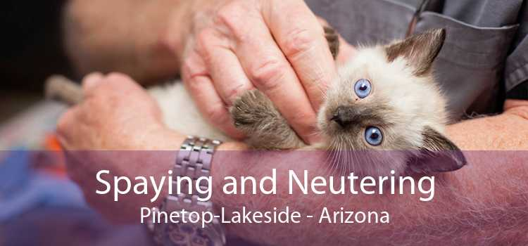 Spaying and Neutering Pinetop-Lakeside - Arizona