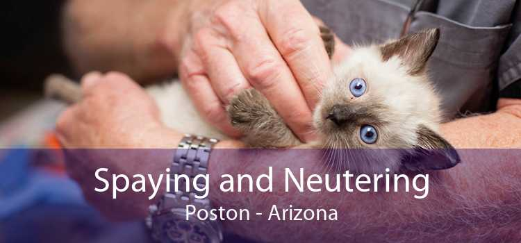 Spaying and Neutering Poston - Arizona