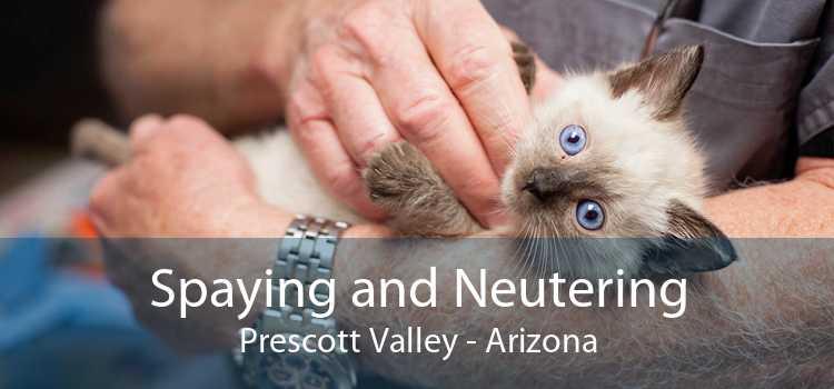 Spaying and Neutering Prescott Valley - Arizona