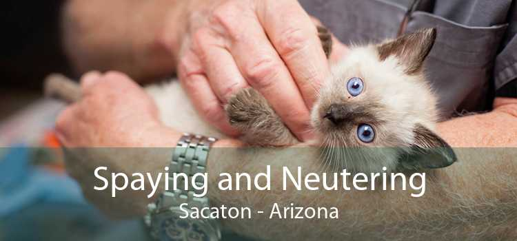 Spaying and Neutering Sacaton - Arizona