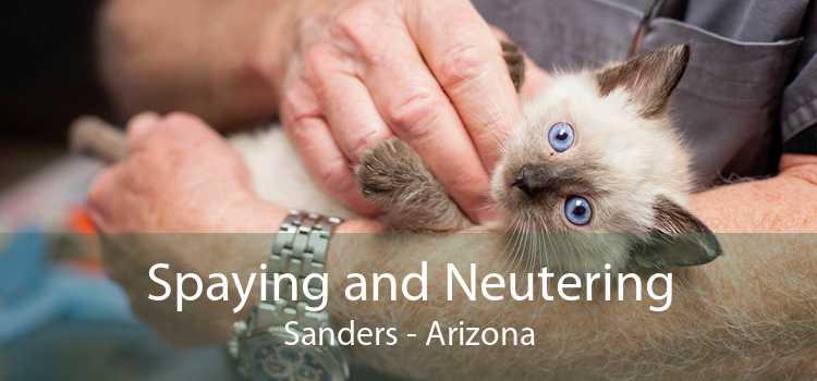 Spaying and Neutering Sanders - Arizona