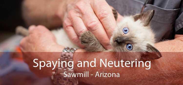 Spaying and Neutering Sawmill - Arizona