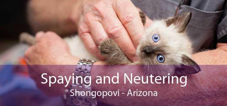 Spaying and Neutering Shongopovi - Arizona
