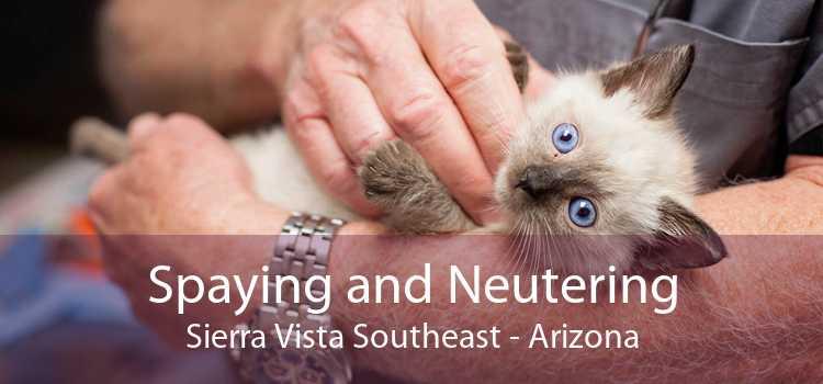 Spaying and Neutering Sierra Vista Southeast - Arizona