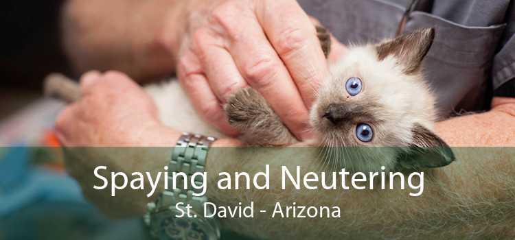 Spaying and Neutering St. David - Arizona