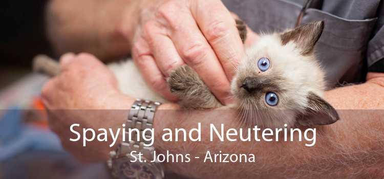 Spaying and Neutering St. Johns - Arizona