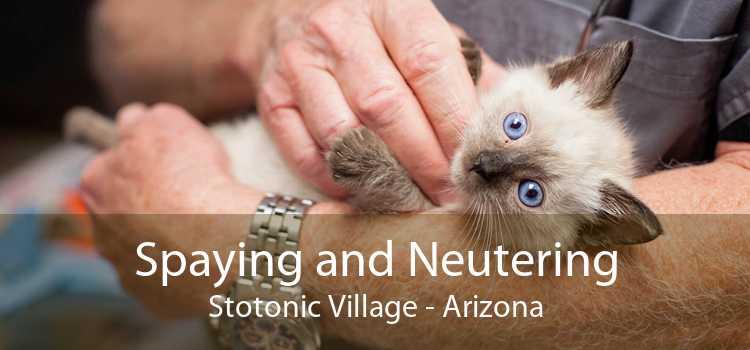 Spaying and Neutering Stotonic Village - Arizona