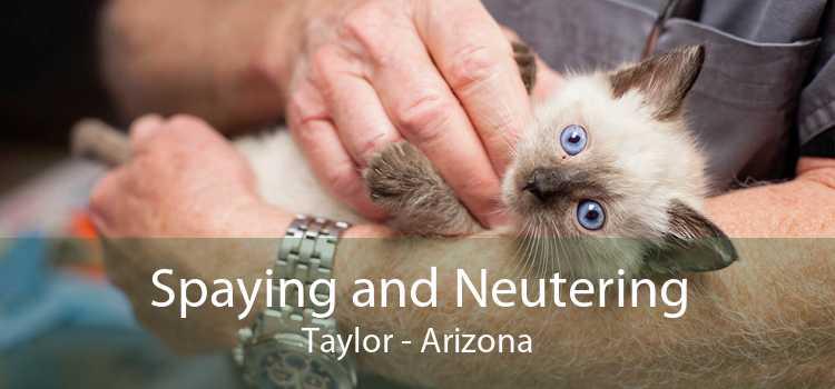 Spaying and Neutering Taylor - Arizona