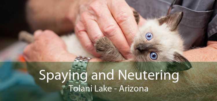 Spaying and Neutering Tolani Lake - Arizona