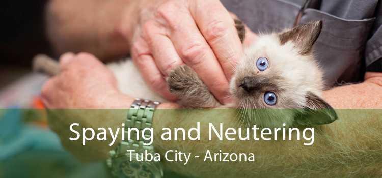 Spaying and Neutering Tuba City - Arizona