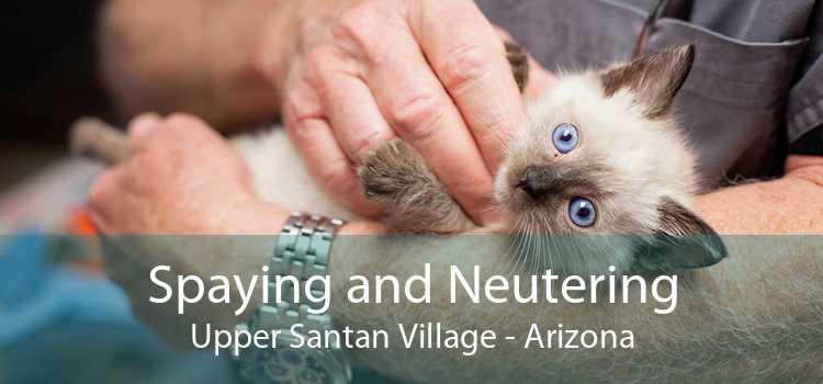 Spaying and Neutering Upper Santan Village - Arizona