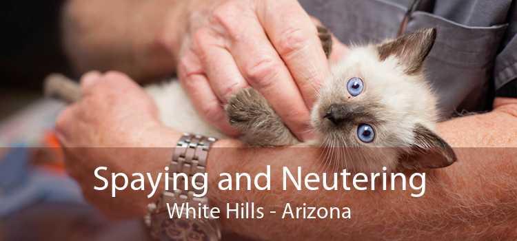 Spaying and Neutering White Hills - Arizona