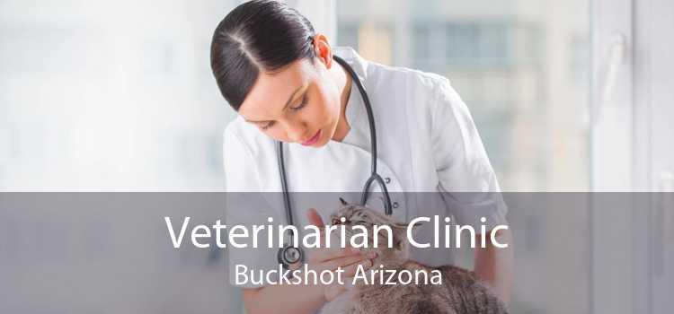 Veterinarian Clinic Buckshot Arizona