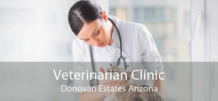 Veterinarian Clinic Donovan Estates Arizona
