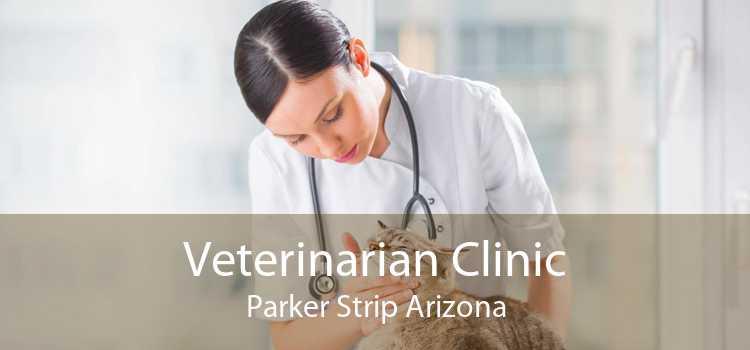 Veterinarian Clinic Parker Strip Arizona