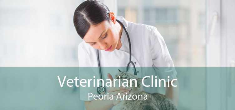 Veterinarian Clinic Peoria Arizona
