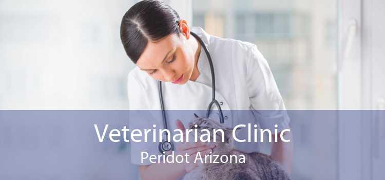 Veterinarian Clinic Peridot Arizona