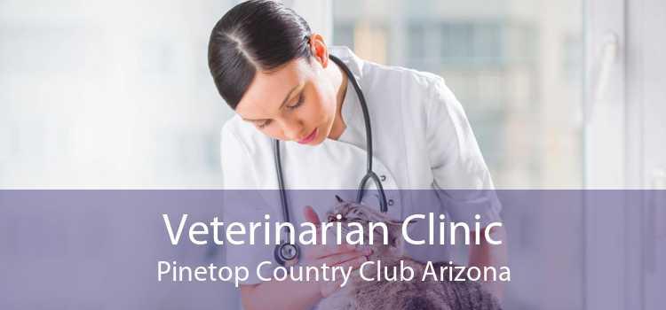 Veterinarian Clinic Pinetop Country Club Arizona