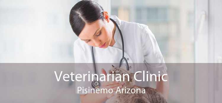 Veterinarian Clinic Pisinemo Arizona